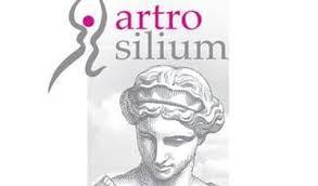 ARTROSILIUM ACTIFS